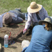 archaeologists digging in the field